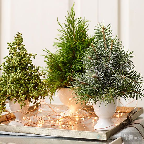 Love the look of a tabletop tree? Bring it to your holiday table. Transfer mini pine trees to white vases and arrange on a silver platter. Accent the trees with copper twinkle lights for a chic centerpiece. /