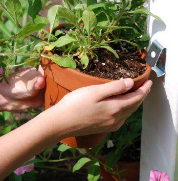 12 mejores imágenes de garden en pinterest | jardinería, jardines