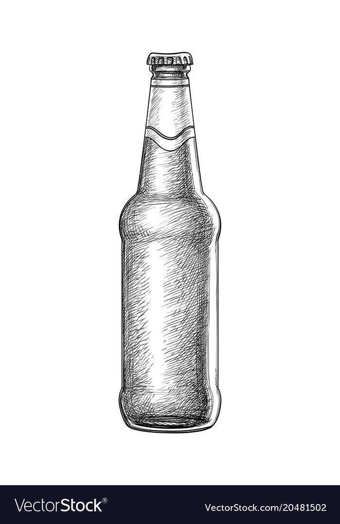Hand drawn beer bottle vector image on en 2020 (con ...