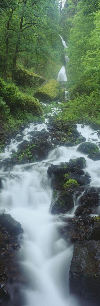 Northern Falls at Silver Falls State Park, Salem, Oregon, USA