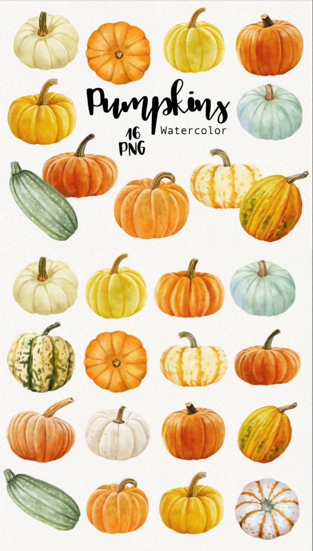 Pumpkin Clipart Watercolor Fall Autumn Clipart Orange And Etsy In 2021 Pumpkin Clipart Pumpkin Art Pumpkin Illustration