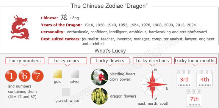 17 best images about chinese dragon on pinterest horoscopes dragon zodiac and births. Black Bedroom Furniture Sets. Home Design Ideas