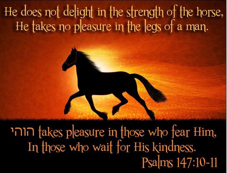 Psalm 99 | Psalms 147:10-11