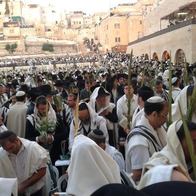 #Sukkot in #Israel! Christians probably know this as