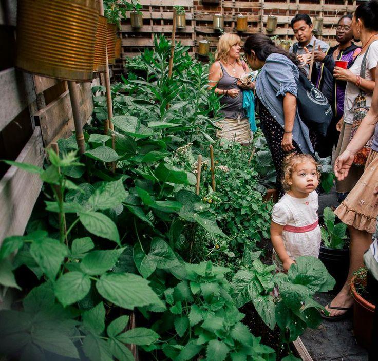 More Garden Workshops this Summer!