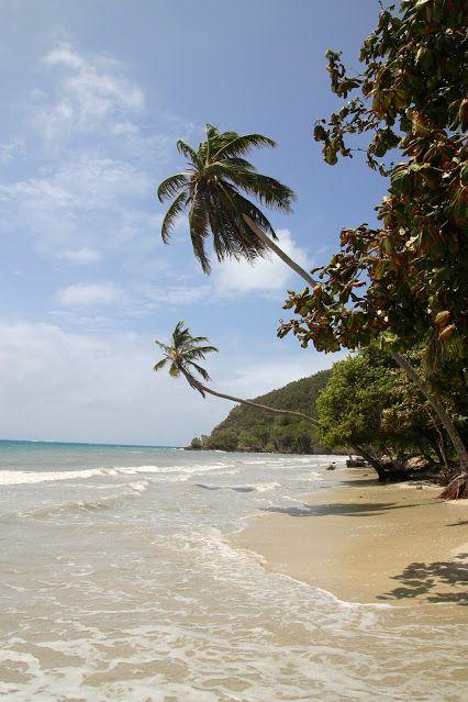 San Andres Islas - Playas increibles en La Isla de Providencia, Colombia.