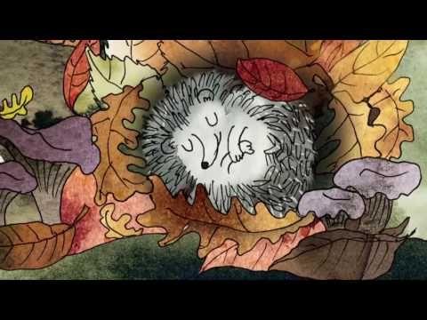 """""""Życie lasu"""" Katarzyny Bajerowicz - część 10 - YouTube"""
