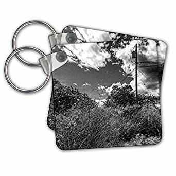 UTILITY POLE MOUNTAIN - Key Chains  3dRose  Link: