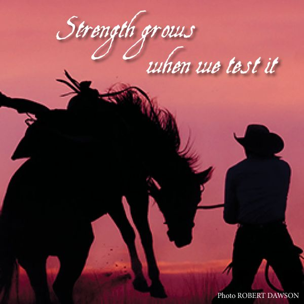 106 best Cowboys & Angels images on Pinterest | Res life, Country ...