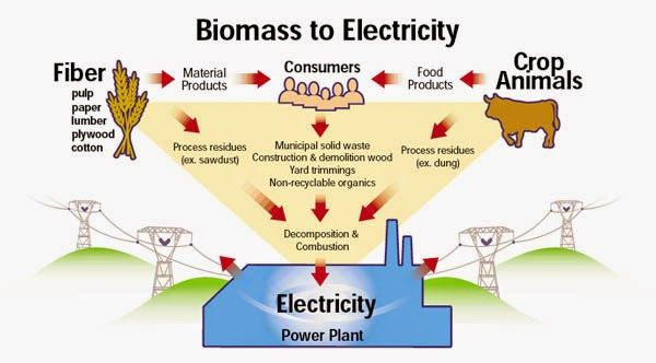 Biomass Power Market: United Kingdom Industry Analysis, Size, Share, Growth, Trends and Forecast Till 2030