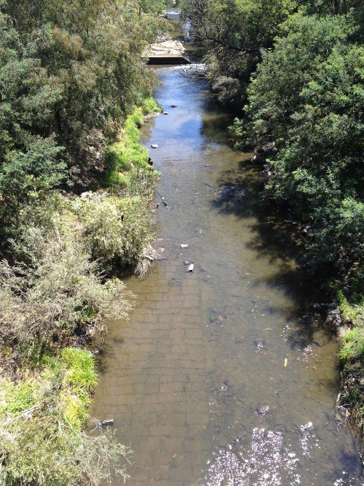 Merri creek bike path Coburg Melbourne Australia
