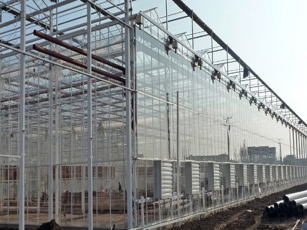Cooling Pad Fan System Farm Buildings Greenhouse Building