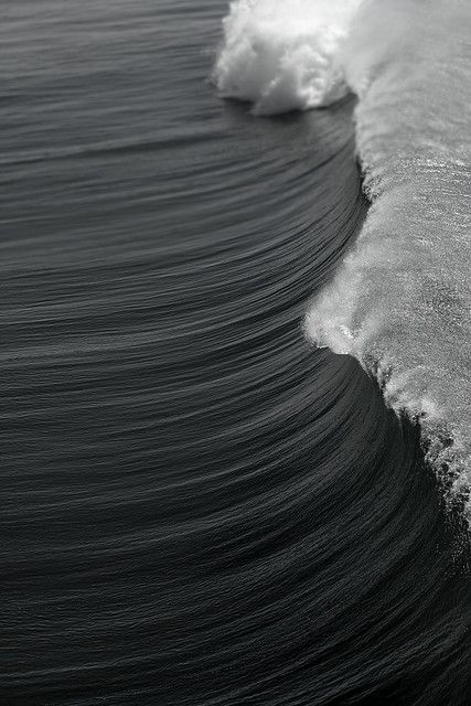 the sea in black and white.