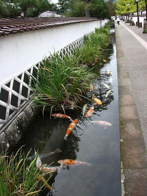 津和野の街並み(島根) Tsuwano scenery, Shimane, Japan