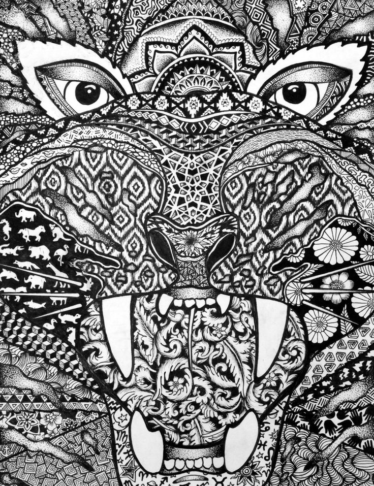 269 best images about zentangle animals on pinterest for Art drawing ideas for adults