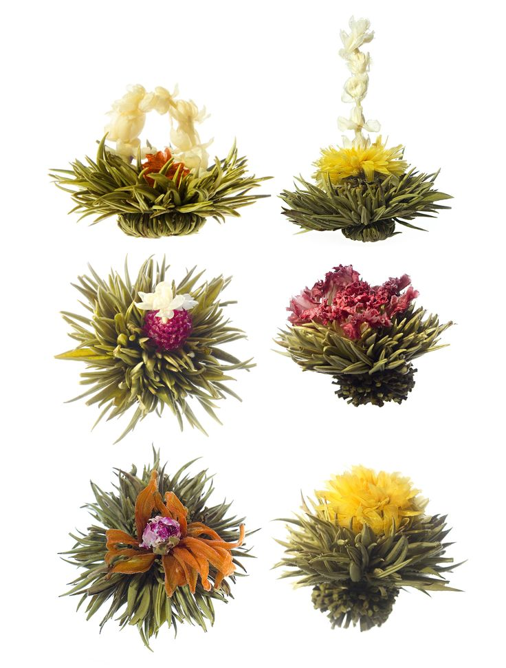 What a cool gift- These tea balls bloom as you steep your tea in a clear glass teapot. Steep for a few minutes and drink your tea as you gaze upon a lovely flower! How cool is that? You get 6 and the price is good- Medley of Blooming Teas   @Gardener Brown's Supply