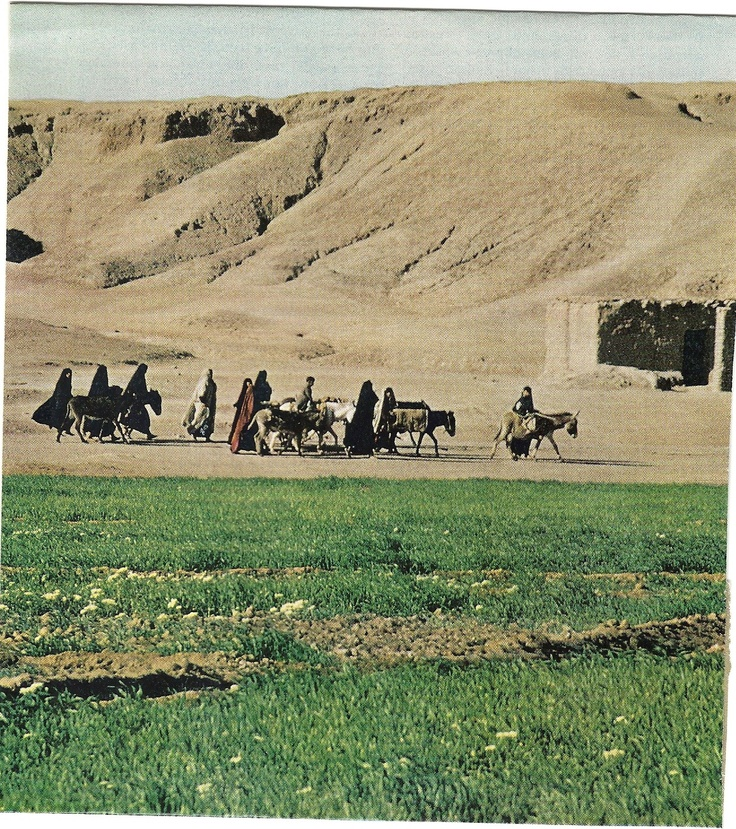 Pilgrims pass a holy man's tomb beyond irrigated fields.  National Geographic, December 1966.