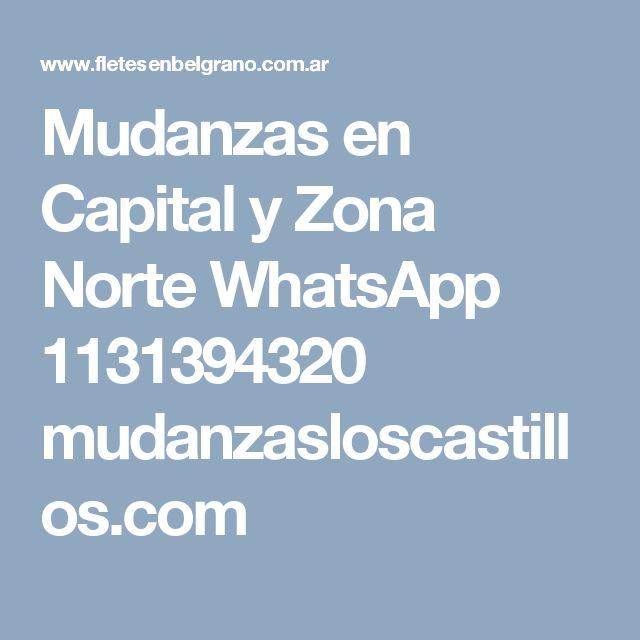 Mudanzas en Capital y Zona Norte WhatsApp 1131394320 mudanzasloscastillos.com