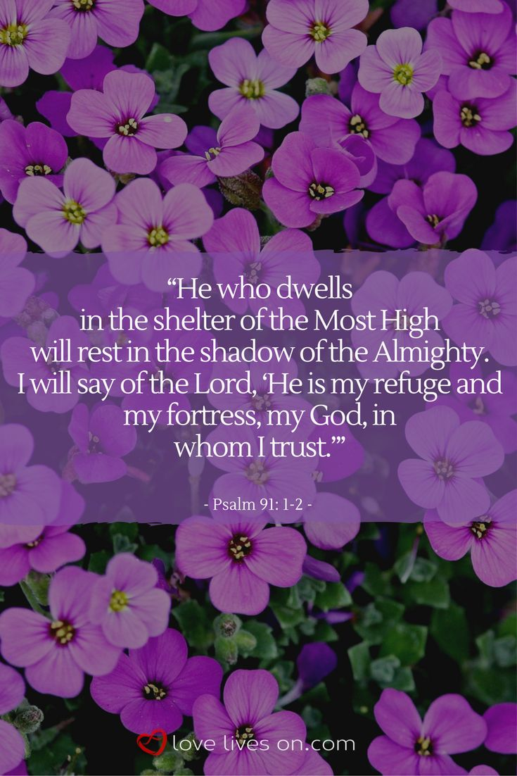 A bible verse for funerals from Psalm 91: 1-2. Click for more funeral quotes from the bible to include in a eulogy or reading for your loved one's service.