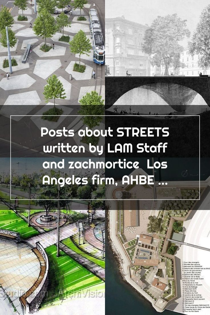 Posts about STREETS written by LAM Staff and zachmortice