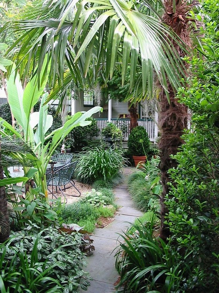 Best 25+ Tropical Landscaping Ideas On Pinterest