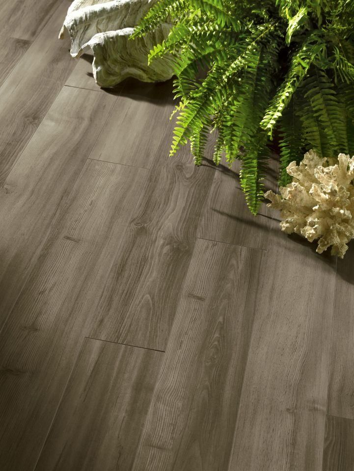Premium Lustre Collection Adrift Pine 12mm Laminate Flooring By Armstrong Flooring Armstrong Flooring Laminate Flooring