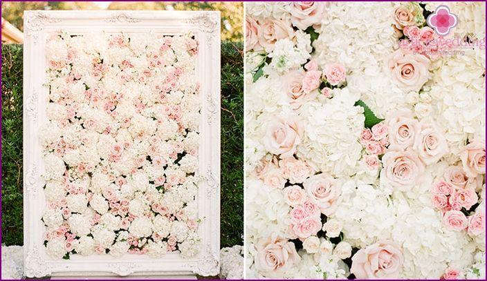 Zid de flori pentru nunta - idei de design, o clasă de master, fotografii