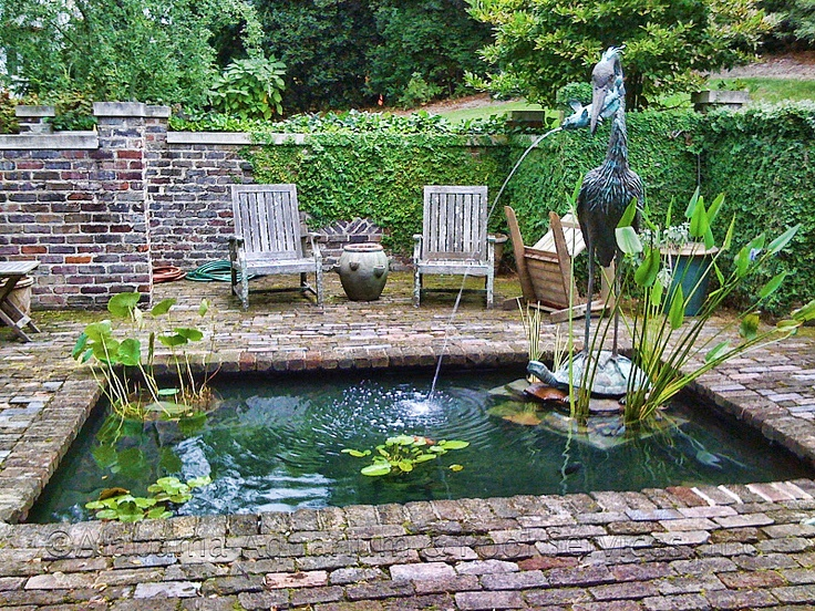 25 best images about fishyyy on pinterest alabama fish for Outdoor aquarium pond