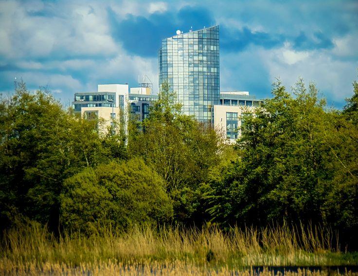 Skyscraper in trees by Felikss Veilands on 500px