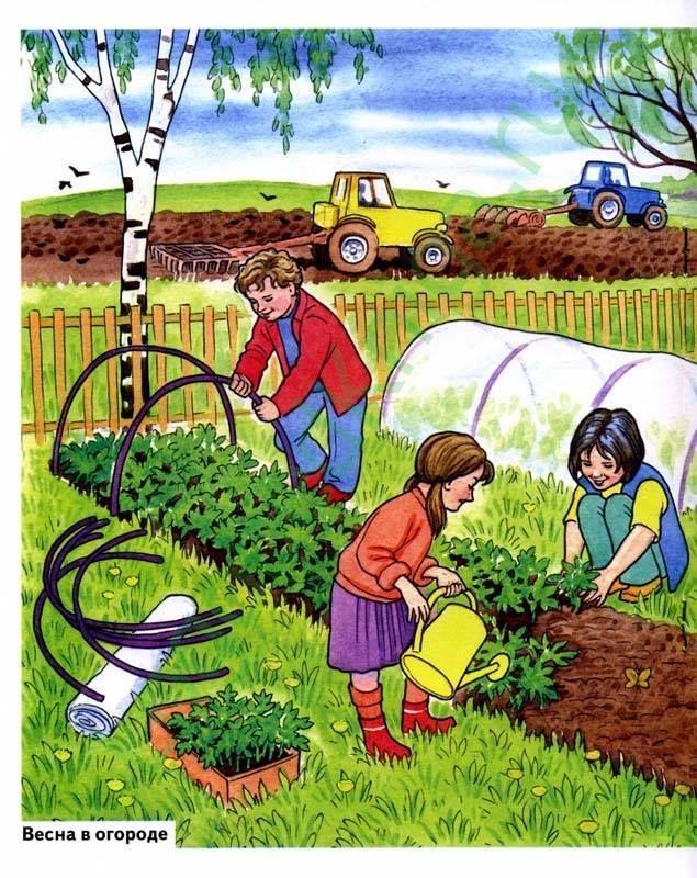 Картинка труд в природе для детей