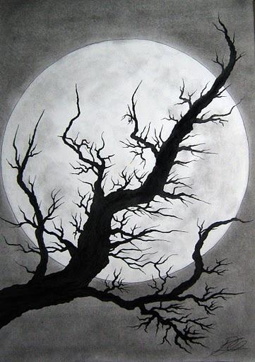 ink tree & moon: value, sha