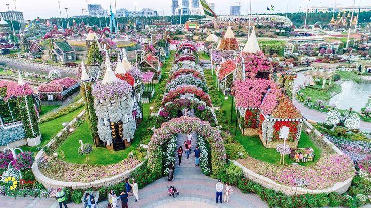 A Dubai c'è una specie di parco divertimenti interamente dedicato ai fiori: qui trovi casette fiorite, aiuole fitte di corolle, arcate floreali. Una festa di colori per gli occhi! Si trova nel nuovo quartiere di Dubailand, dove trovi anche il meraviglioso Butterfly Garden che ospita moltissime specie di farfalle variopinte.