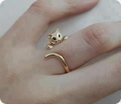 Cat jewelry. Oh yeah.
