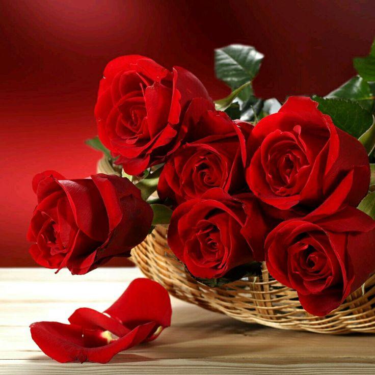 с днем рождения меня картинки красивые розы как другие