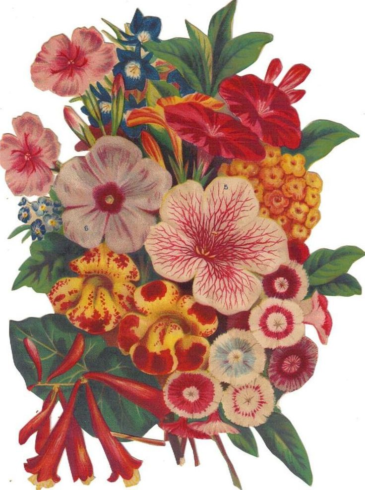 Victorian Cut Out Paper Scrap Colorful Floral Bouquet c1880s