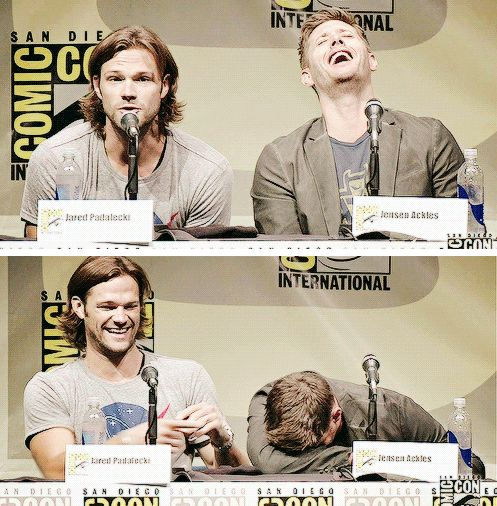 I'm laughing at Jared laughing at Jensen face planting the desk!!!!
