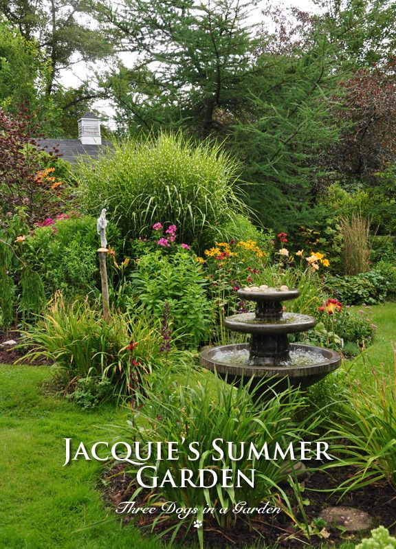 Jacquie S Summertime Garden Part 2 Three Dogs In A Garden Day Lilies Smoke Bush Deciduous Trees
