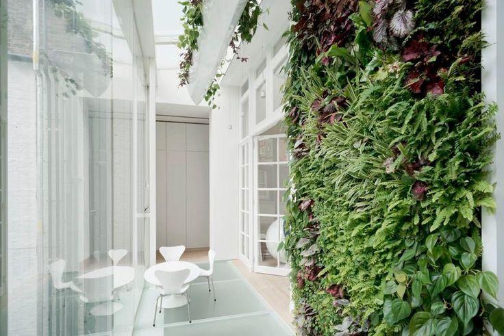 La casa sul cortile. Un'attento lavoro sulla vegetazione da interni ha distribuito superfici verdi lungo il corridoio della veranda, una parete verde verticale e una sequenza di vasi pensili che calano dal lucernario.