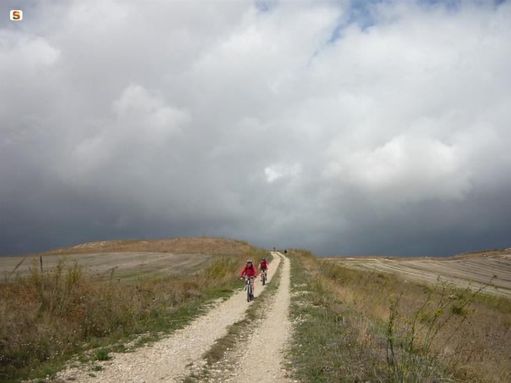 Escursione in mountain bike tra i campi di grano della Marmilla