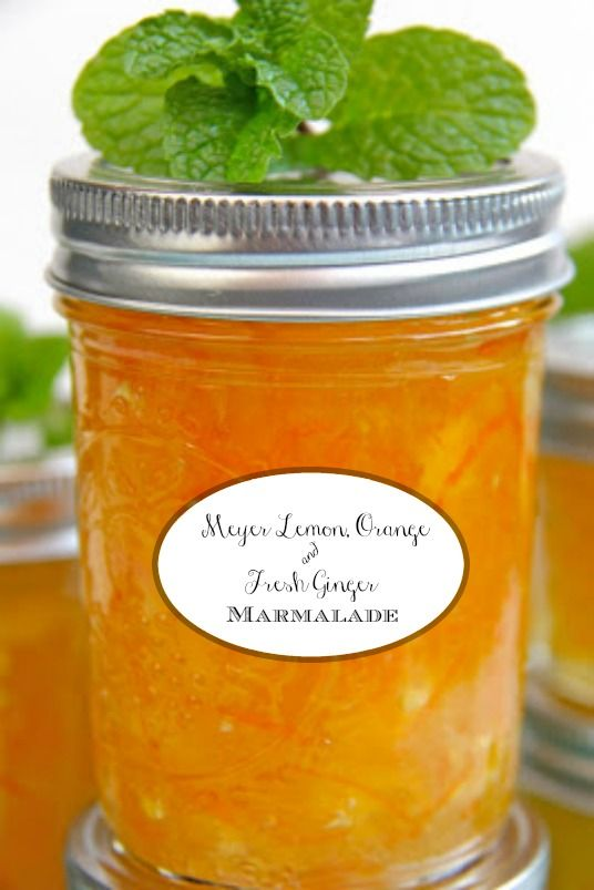 Meyer Lemon, Orange and Fresh Ginger Marmalade - if you think you don't like marmalade, think again. This one has no bitterness and there's no canning knowledge needed. It's super simple and crazy delicious!