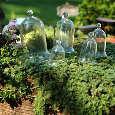 """Miniature Glass Cloche Set  This set of 5 garden cloches range in size from 1.5"""""""" to 3"""""""" high. These Cloches are glass, so not for young children."""