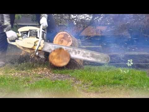 OLD PIONEER 610 CHAINSAW - YouTube