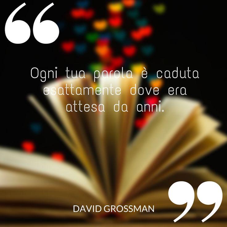 Ogni tua parola è caduta esattamente dove era attesa da anni.  #parola #davidgrossman #ilovewriting #writer #quote #quotes #citazioni
