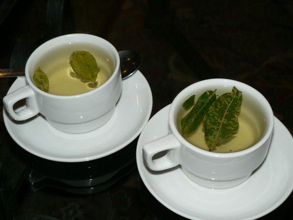 Mate de coca tea