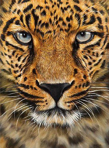 Jason Morgan - Peintre animalier - Léopard en gros plan - Peinture à l'huile