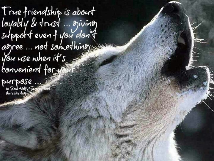 Pinterest Friendship Quotes: Trust And Loyalty In Friendship Quotes