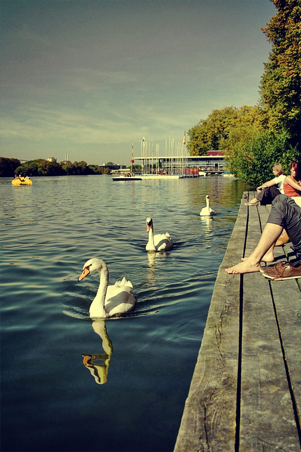 Maschsee, Hannover:  I vaguely remember this (mostly by the name), and photographs perhaps - of me feeding the water fowl.
