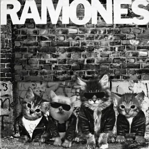 The katmones