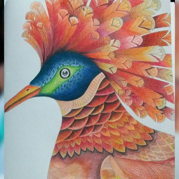 Adult Coloring Book Tropical Animal Kingdom Art