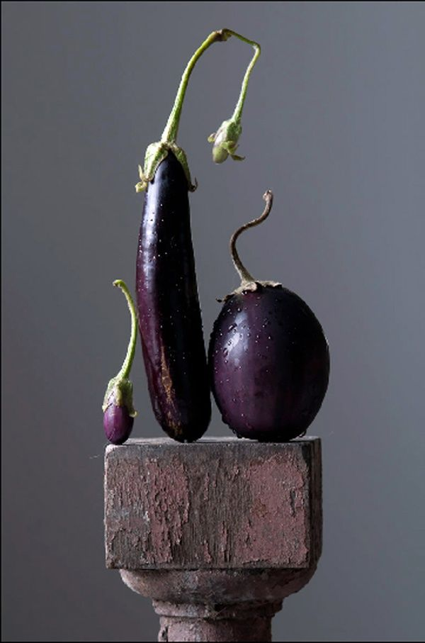 Small, tall, round Aubergines on block